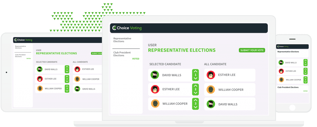 choice_voting-08-1