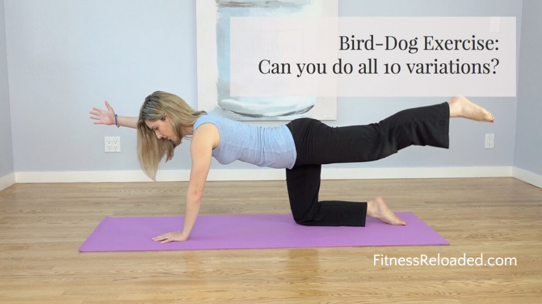 Bird Dog Exercise: 10 Variations From Beginner to Advanced. (video & images)