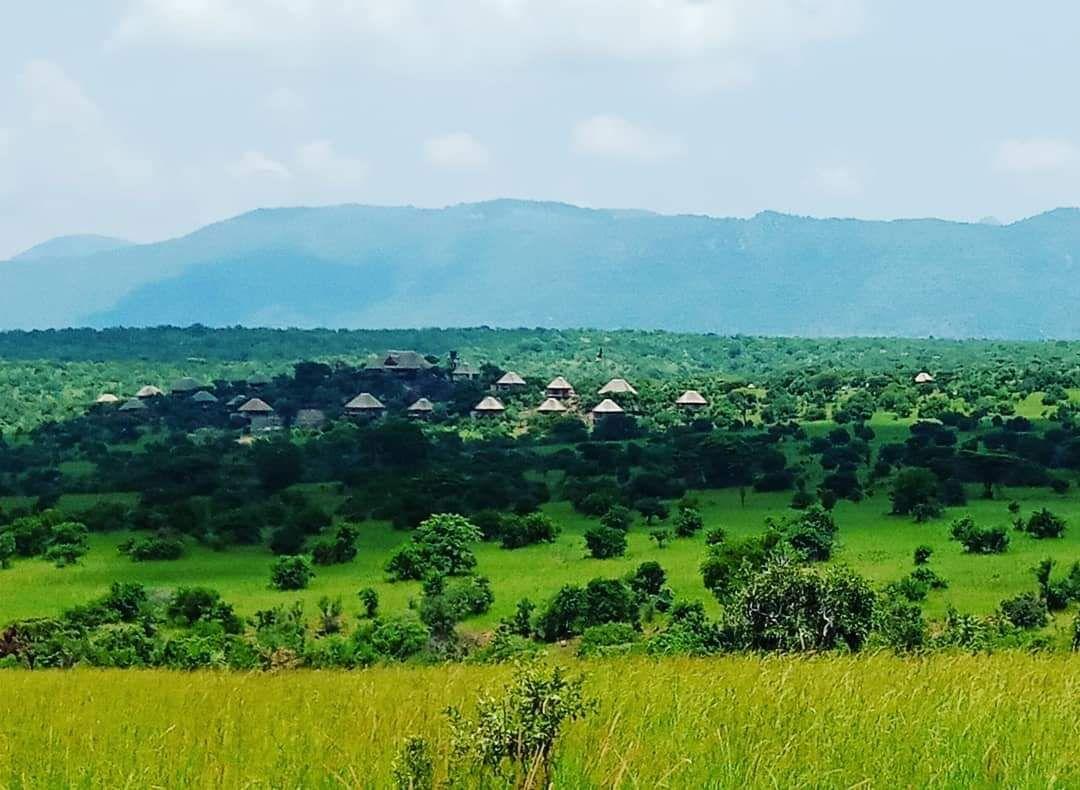 Adere Safari Lodge Kidepo