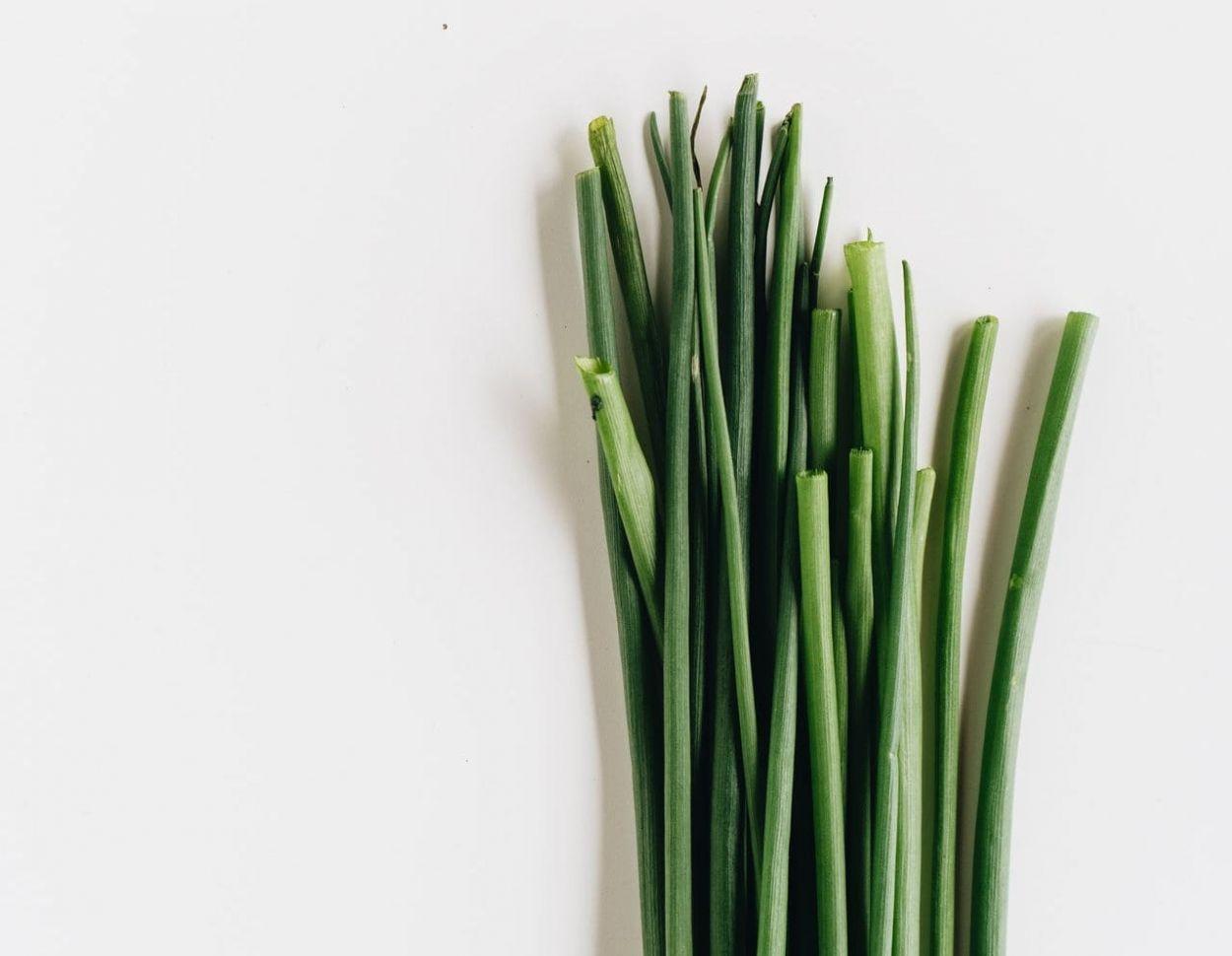 Comment couper la ciboulette de votre jardin [Guide pratique]