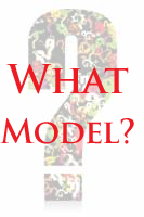 What Business Model Is Right For You