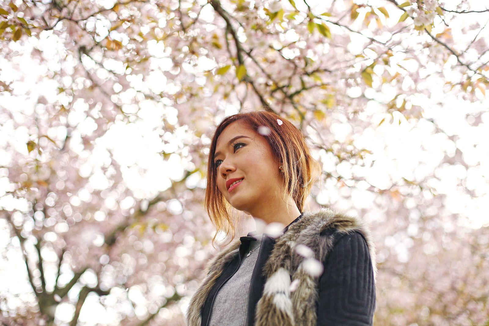Nara Park Cherry Blossom | www.itscamilleco.com