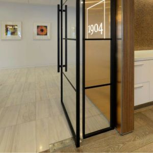 steel look internal pivot door