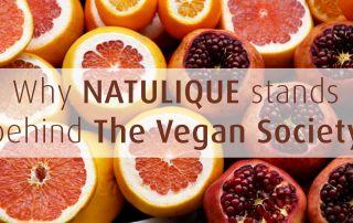 vegan fruits