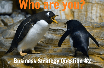 Business Strategy Question 2: Who Are You?