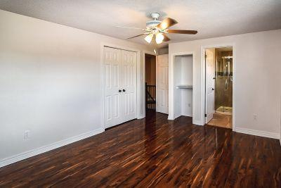 24. 102 MacIntosh Drive Stoney Creek - Master Bedroom Overview