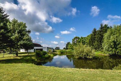 43. 1242 Fiddlers Green Road - Back Pond