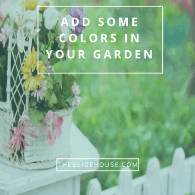 The Best Ways to Add Colors In Your Garden