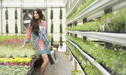 Fashion Spring 2017 – Home Grown