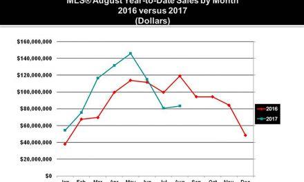 Market Watch Autumn 2017