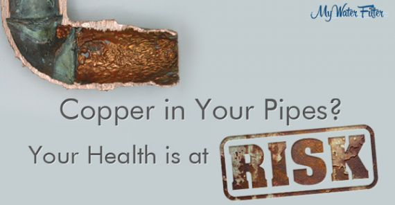 copper in your water pipe