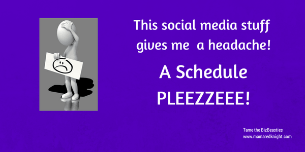 """Dark purple rectangle with white text """" This social media stuff gives me a headache...a schedule pleeze"""" and a gray bubble head figure"""