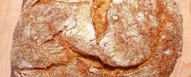 Baked No-Knead Bread on bread board
