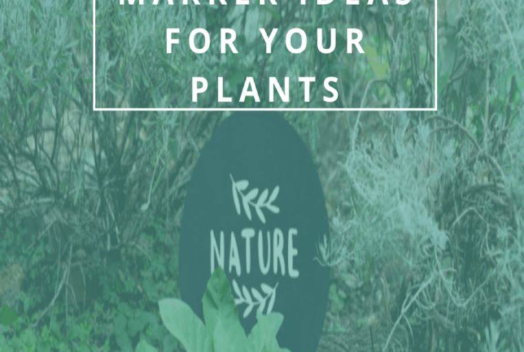 GARDEN MARKER IDEAS FOR YOUR PLANTS