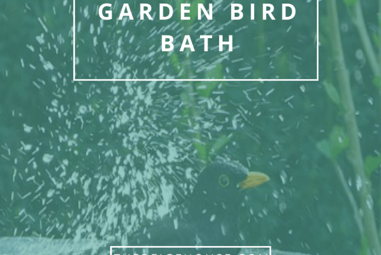 Easy DIY Garden Bird Bath