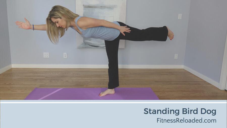 standing bird dog exercise progression